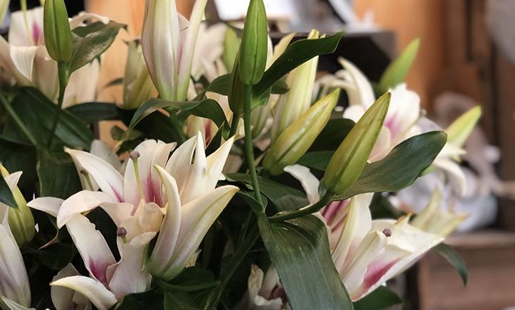 fleuriste a carnoules-fleurs de deuil var-creations florales toulon-decorations florales carnoules-artisan-fleuriste var-bouquets de fleurs hyeres